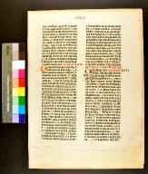 Biblia Latina. Leaf 308