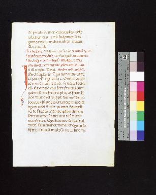 Lectionarium: fragment