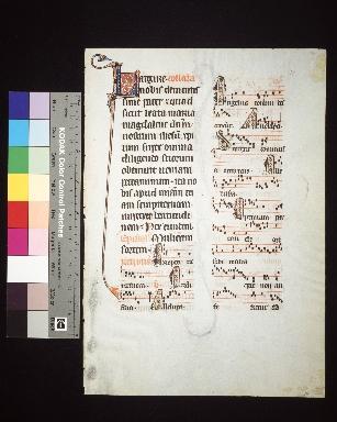 Missale Bellovacense: fragment