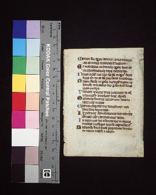 Psalterium : fragment