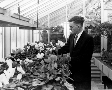 Bernard Harkness, Highland Park Conservatory