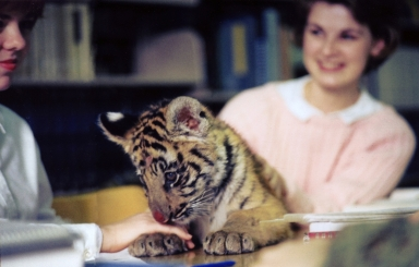 SpiRIT the Tiger and Unidentified Students in the Library