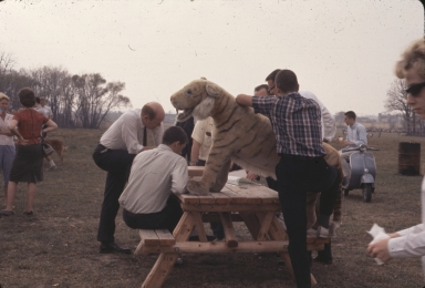 Plush Tiger at Greek Picnic