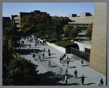 Students walk the Quarter Mile