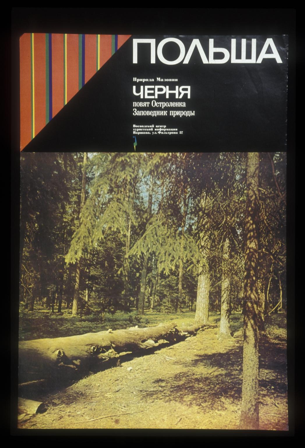 Polsha: priroda mazovii, Chernia, poviat Ostrolenka, zapovednik prirodi, Voevodskii tsentr turist skoi informtsii varshava ul filtrova 57