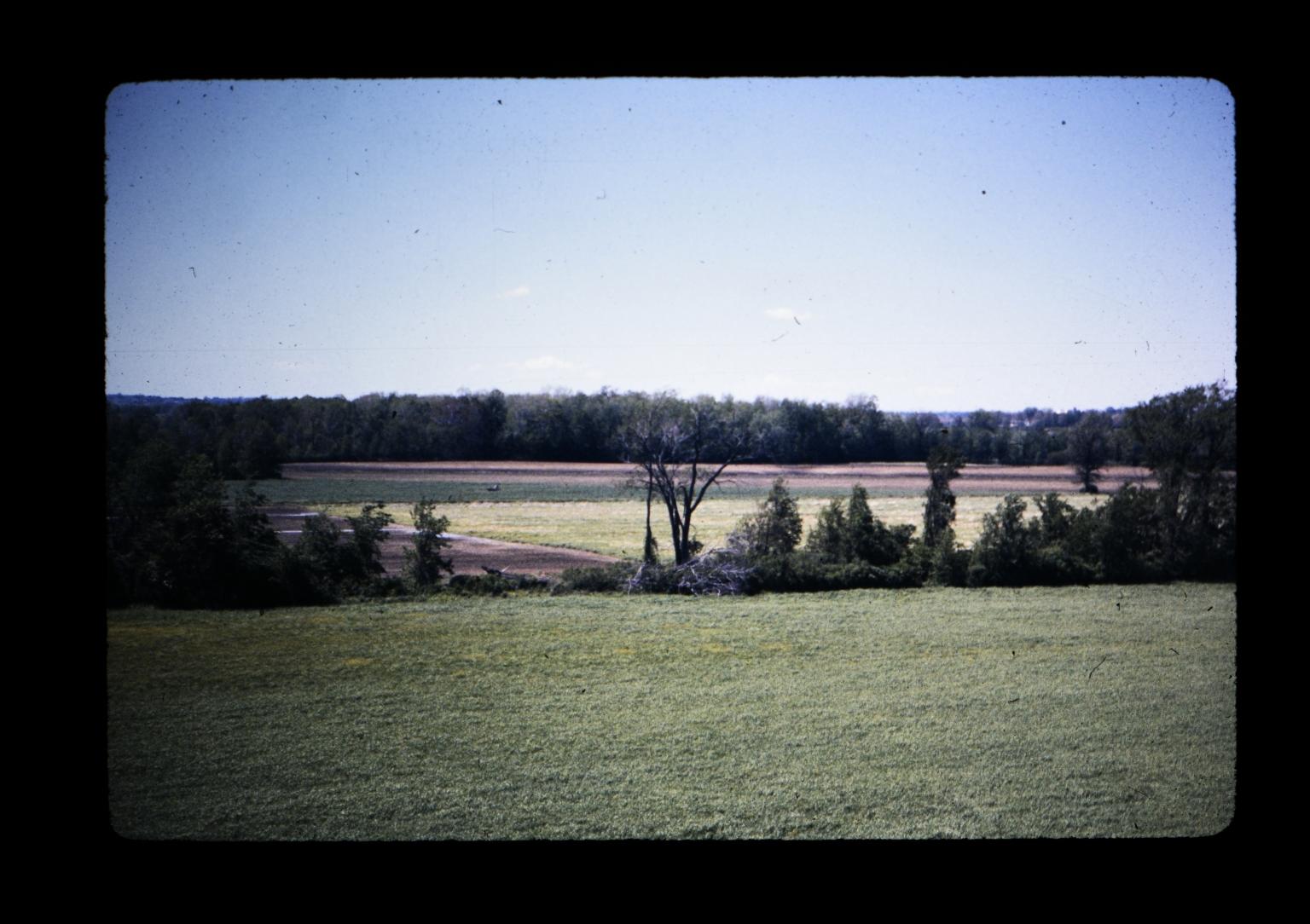 Henrietta land