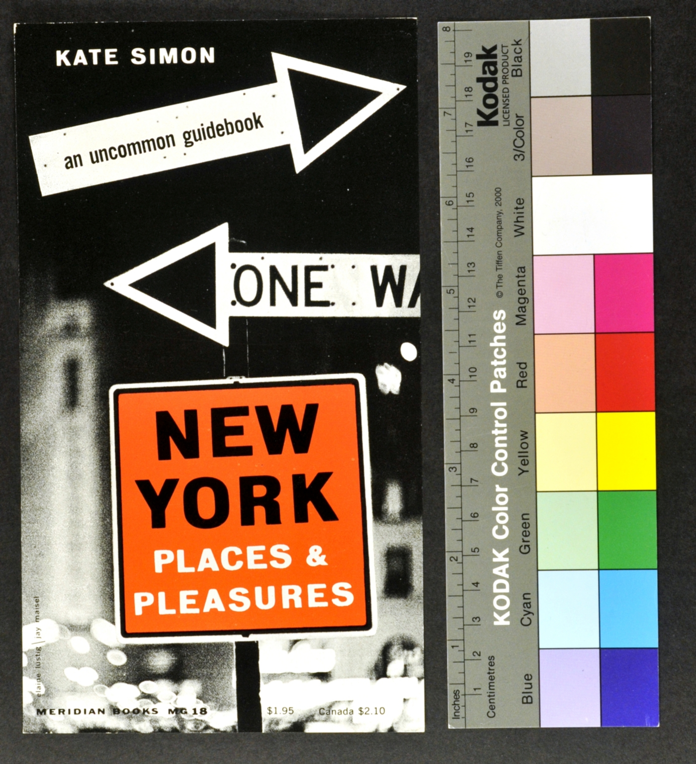 New York Places & Pleasures: An Uncommon Guidebook